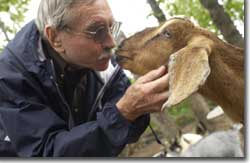 Photo of Edward Albee and friend